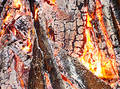 Fire anatomy Royalty Free Stock Image