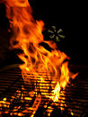 Fire on BBQ Grill Royalty Free Stock Photography