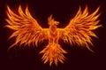Fire bird Royalty Free Stock Photo