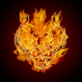 Fire Burning Flaming Skull with Horns Stock Image
