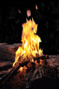Fire burning at night closeup of firewood Royalty Free Stock Photography