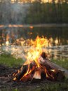 Fire burns by the river stacked firewood Royalty Free Stock Photo