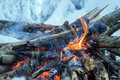 Fire burns in the snow in the woods on a background of snow covered firs walpaper Stock Photo