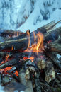 Fire burns in the snow in the woods on a background of snow covered firs walpaper Stock Photography