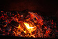 The fire and coals Royalty Free Stock Photo
