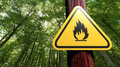 Fire danger sign on the tree Royalty Free Stock Image