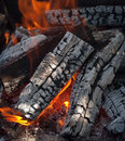 Fire firewood heater burning wood in fireplace cast Royalty Free Stock Photography