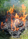 Fire flames and ashes of burnt documents Royalty Free Stock Photography
