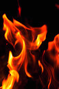 Fire flames on a black background. Blaze fire flame texture back Royalty Free Stock Photo