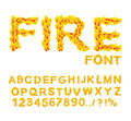 Fire font. Burning ABC. Flame Alphabet. Fiery letters.  Hot typo Royalty Free Stock Photo