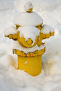 Fire hydrant covered with snow Royalty Free Stock Photo