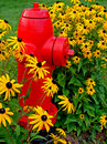Fire hydrant and flowers Royalty Free Stock Photo