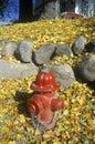 Fire hydrant in lake placid ny Stock Image
