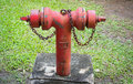 Fire hydrant old red against a green lawn Royalty Free Stock Images