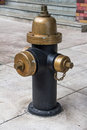 Fire hydrant vintage style in newyork usa Royalty Free Stock Image