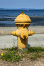 Fire hydrant a yellow stands ready Royalty Free Stock Photo