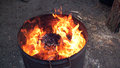 Fire in a iron barrel Stock Images