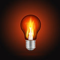 Fire in light bulb Royalty Free Stock Photo