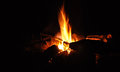 Fire in the night campfire flames total darkness Royalty Free Stock Photo
