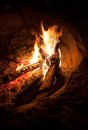 Fire in the night wood is burning Royalty Free Stock Photos