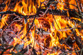 Fire and red embers in the Royalty Free Stock Image