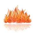 Fire on white background vector illustration Royalty Free Stock Image