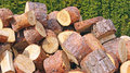 Fire wood pile of beech Royalty Free Stock Images