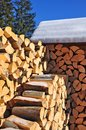 Fire wood under a canopy. Royalty Free Stock Photo