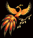 Firebird, Russian fairy tales character Stock Images