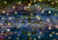 Fireflies and water lily pond at night depiction Stock Images