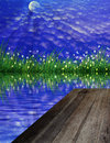 Firefly and full moon grass on water reflection background Stock Image