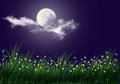 Firefly and grass full moon background Stock Photo