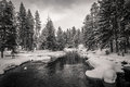 Firehole river, Yellowstone Royalty Free Stock Photo