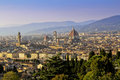 Firenze view Royalty Free Stock Photo