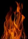 Fireplace texture burning isolated on black background Royalty Free Stock Images