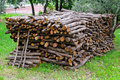 Firewood bunch Royalty Free Stock Image