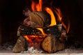 Firewood burning at the fireplace close up Stock Photos