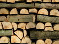 Firewood fresh hooked fire wood for winter time Royalty Free Stock Photography