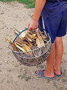 Firewood kindling Stock Images
