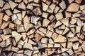 Firewood - oak tree and ash tree Royalty Free Stock Photo
