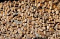 Firewood pile of chopped fire wood prepared for winter Stock Image