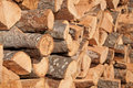 Firewood stacked to dry Royalty Free Stock Image