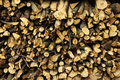 Firewood texture, after the sawing wood Royalty Free Stock Photo