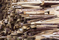 Firewood trimming pine boards for kindling the fire lie in piles Stock Image