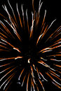 Firework 73 Royalty Free Stock Images