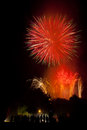 Firework beautiful in hagley park christchurch Royalty Free Stock Photography