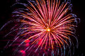 Firework fireworks celebration blue spikes red purple yellow Royalty Free Stock Photo