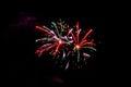 Firework Fireworks Celebration...