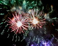 Firework fireworks stock photos silver on black night background Royalty Free Stock Photo