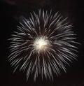 Fireworks flower on dark background Stock Photography
